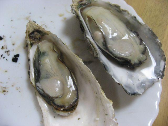 坂越の牡蠣 室津の牡蠣 焼きがき
