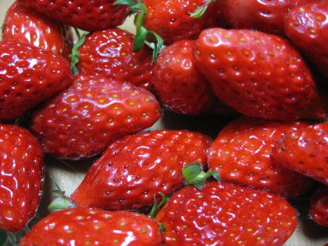 二郎のイチゴ