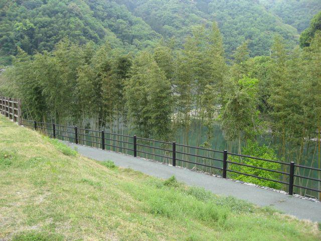 道の駅 清流の里ひじかわ 肱川側の風景