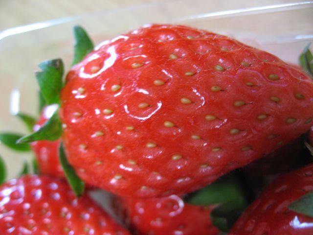 神戸 二郎イチゴ